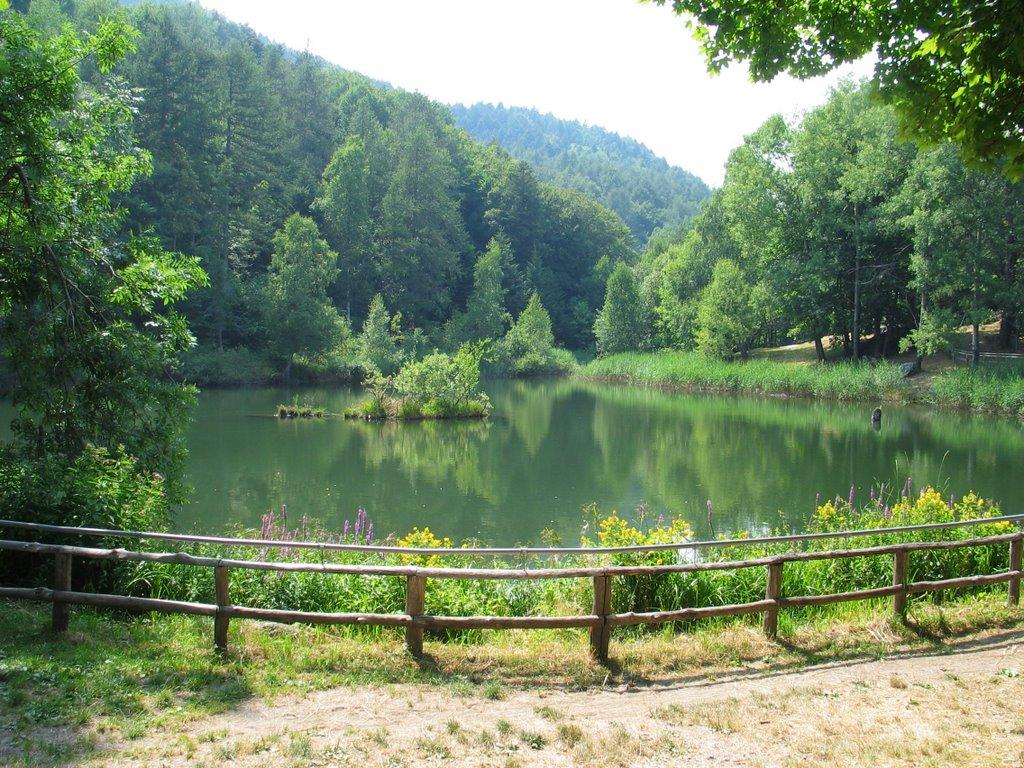 Il paradiso e lago delle rane - San Giorio Valle di Susa Foto di mapio