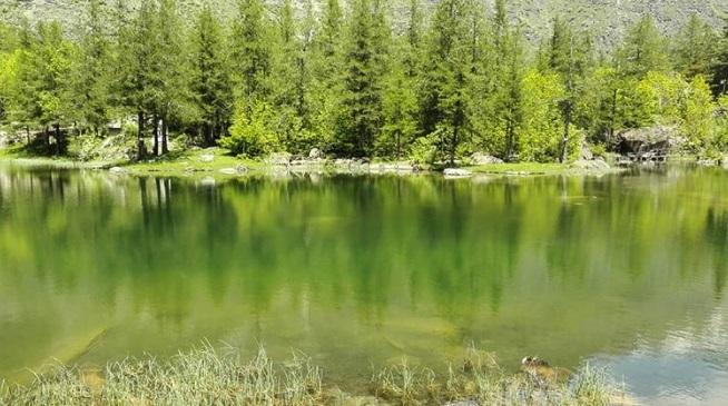 Lago di Ferrera Cenisio - Moncenisio Valle di Susa - IG wild_nature_tales