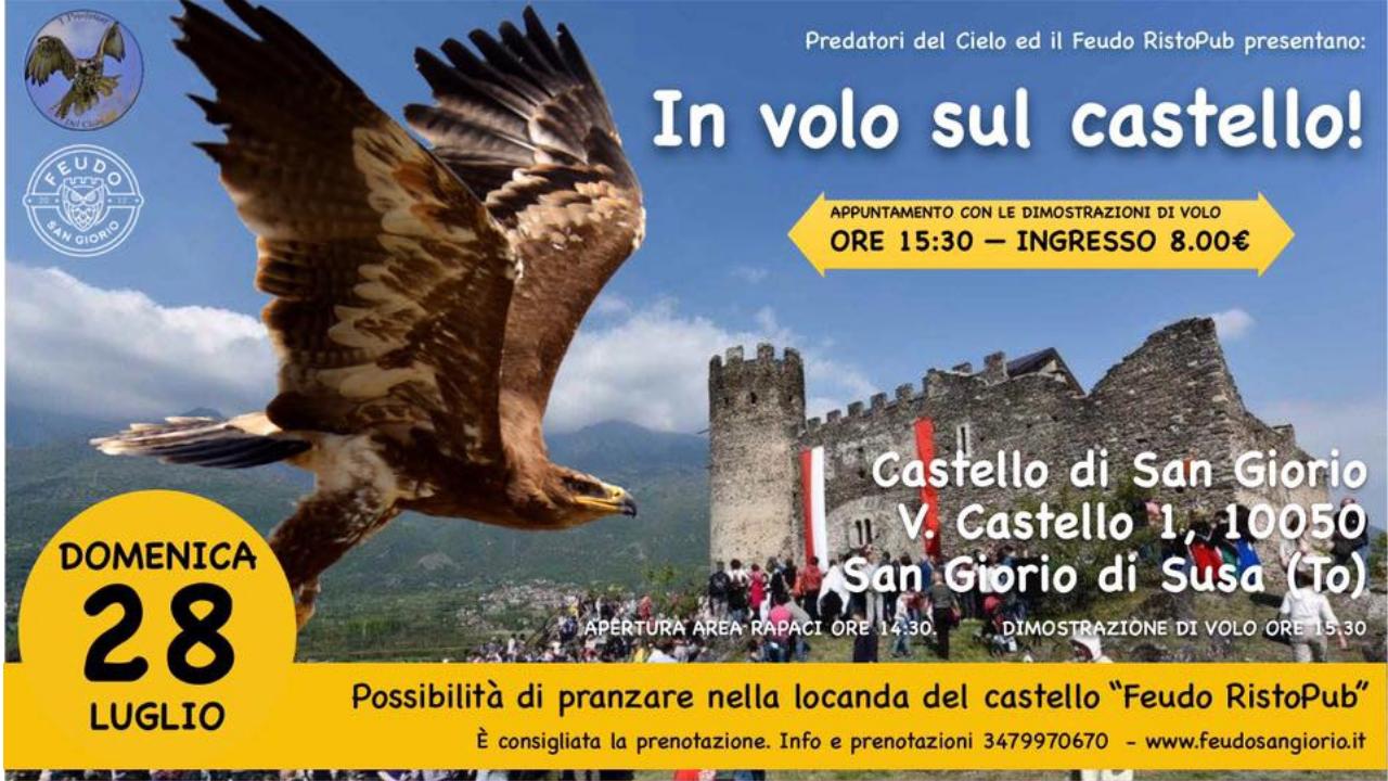 In volo sul castello di San Giorio Val Susa – Dimostrazione di falconeria