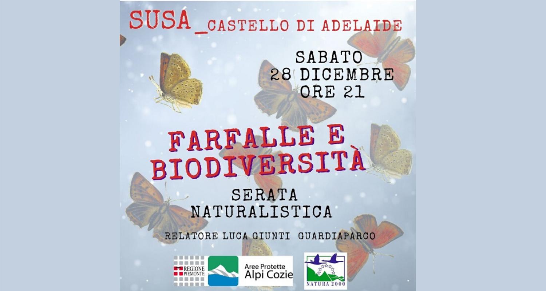 Conferenza naturalistica Farfalle e biodiversita a Susa