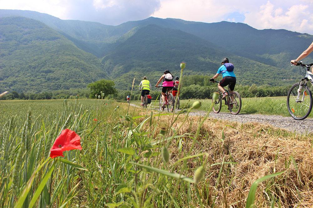 Sentiero Lungo Lago di Avigliana