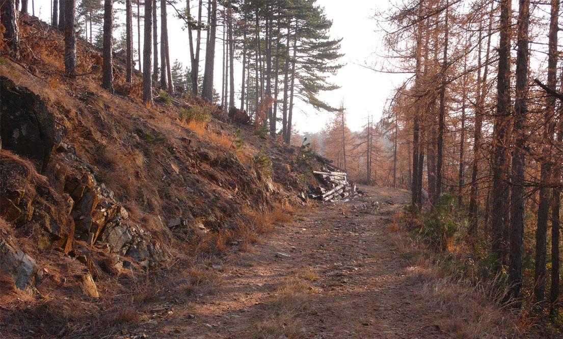 Musinè Bike Trail Percorso Delle Guardie Rosso