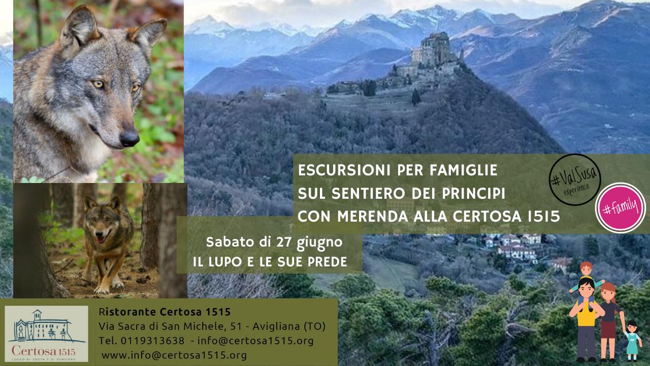 Sentiero dei principi Certosa 1515 - Sabato di 27 giugno IL LUPO E LE SUE PREDE - Valle di Susa Turismo Family
