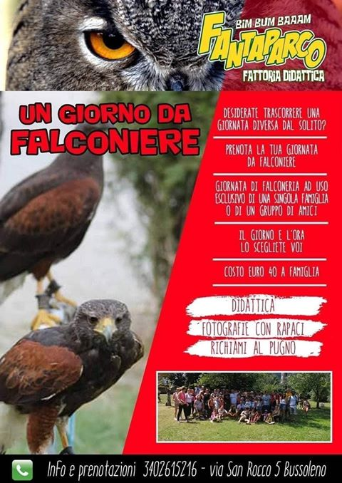 Un giorno da Falconiere -Fattoria didattica in Val Susa