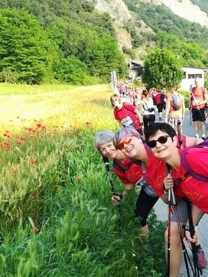 Asd Iride - Via francigena marathon val di susa