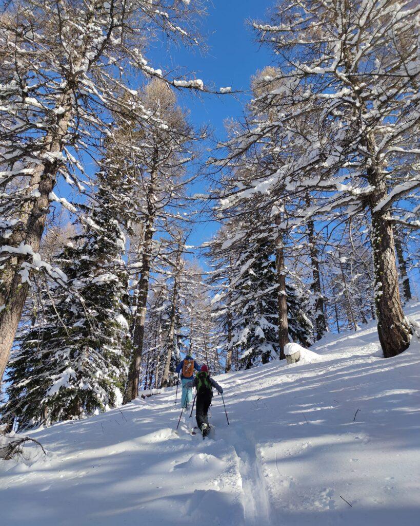ciaspolate_Guide alpine ValSusa inverno 2020.2021