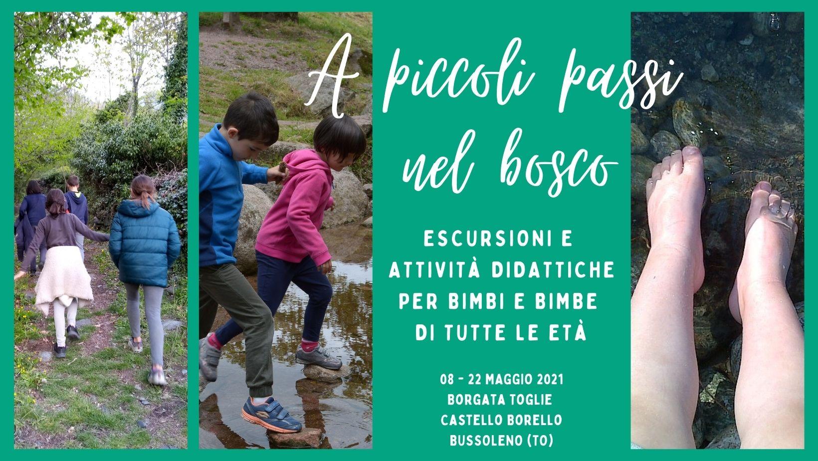 A piccoli passi nel bosco - Escursioni didattiche per bambini con Nel bosco con Helix