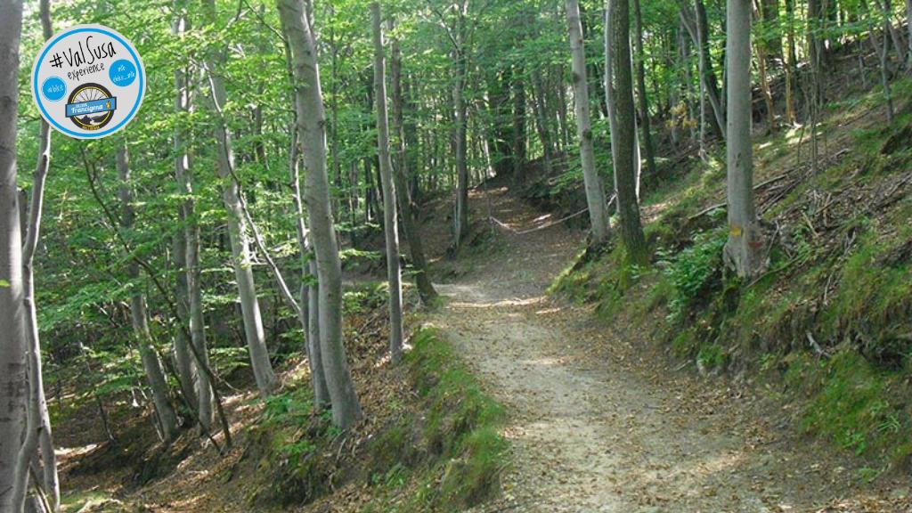 Variante Sentiero 503a – Bassinatto